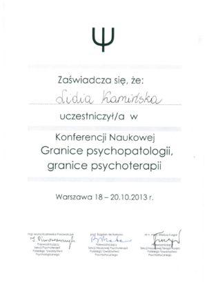 11.Konferencja 2013